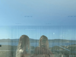 IG-famous twin sisters parade around in their birthday suits as they drop jaws in sexy reflection selfie