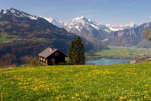 Switzerland_Valley