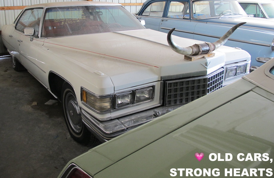 TWIST TUESDAY   OLD CARS, STRONG HEARTS