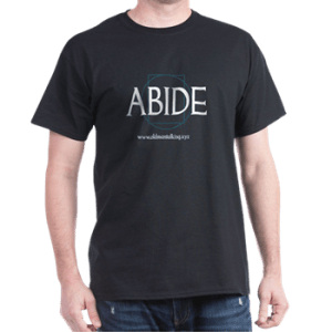 Abide Dark Colored T