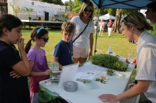 Farmers Arts Metairie Market 47 | Old Metairie Garden Club