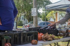 Farmers Arts Metairie Market 12 | Old Metairie Garden Club