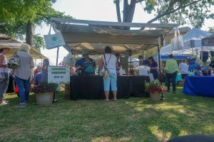 Farmers Arts Metairie Market 40 | Old Metairie Garden Club
