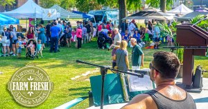 Farmers Arts Metarie Market | Old Metairie Garden Club