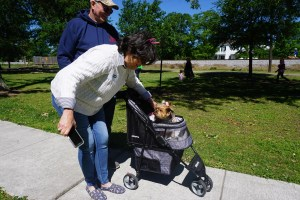 Old Metairie Garden Club Easter Egg Hunt 2019 photo 65