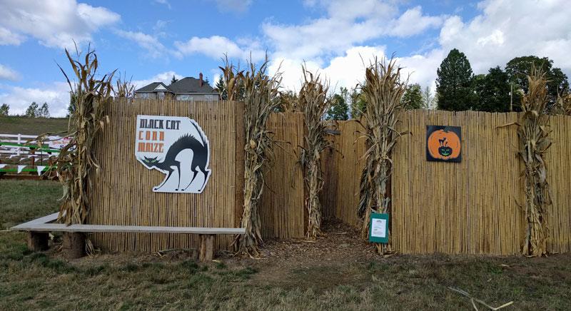 Roloff Corn Maze