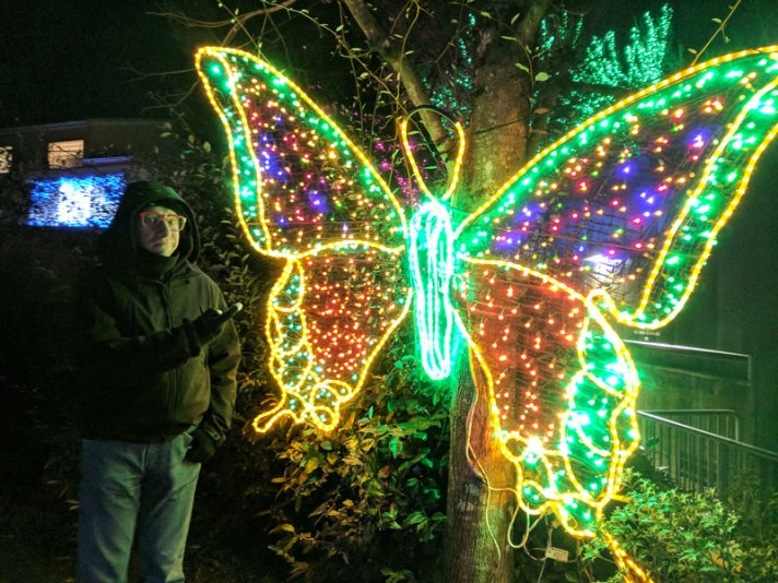 Light-up Yellow Butterfly