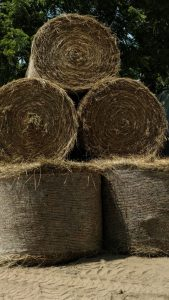 2016 hay stack