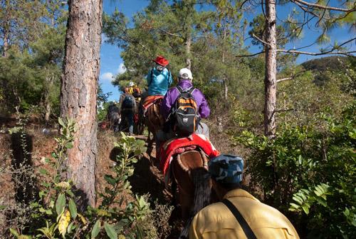 Shaxi horse trek to Shibaoshan from Pear Orchard Temple - Yunnan China