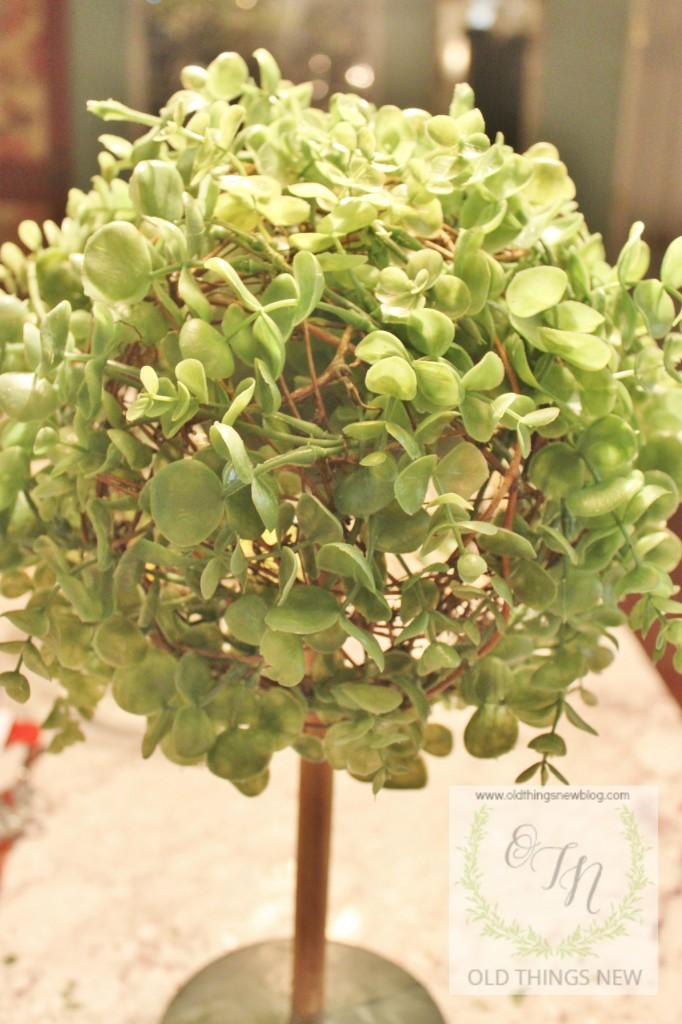 Topiary 001