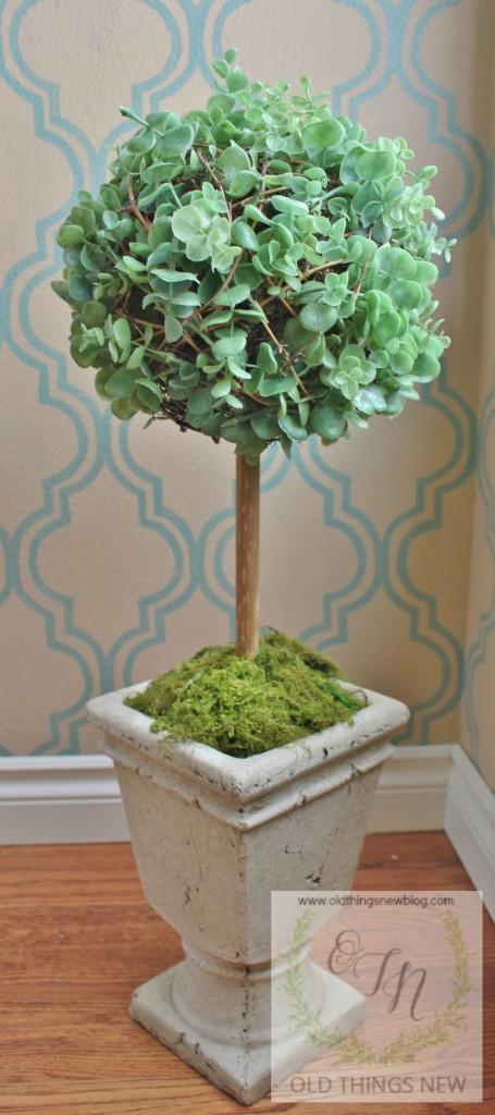 Topiary 004