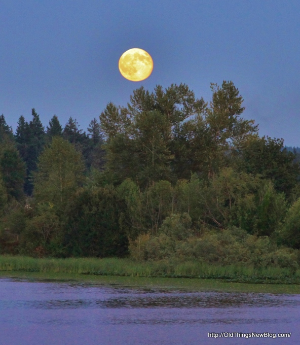 2-Moonrise over Pattison Lake 002-001