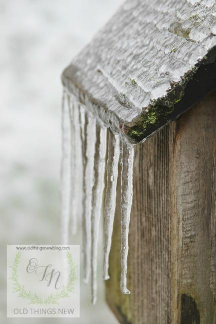 SC Ice Storm 009a