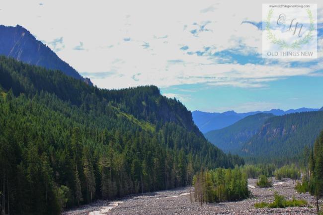 Mt Rainier 005