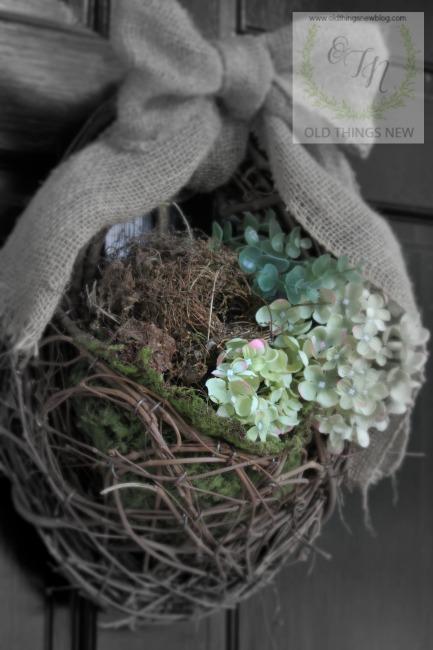 Bird's nest 029