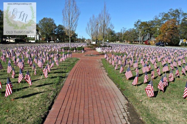 Veteran's Day in Simpsonville 006