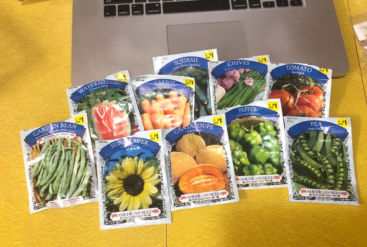 American Seed brand seeds from Dollar General