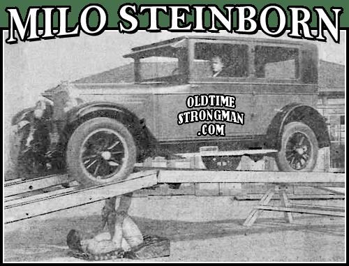 Milo's Human Bridge