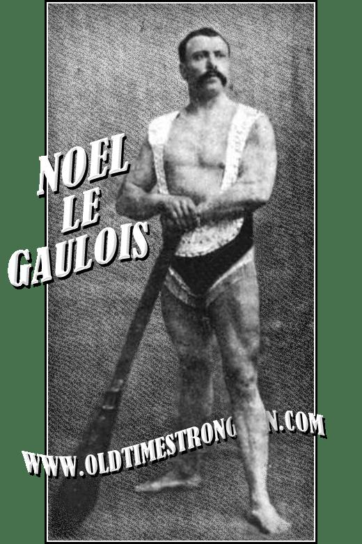 Noel le Gaulois