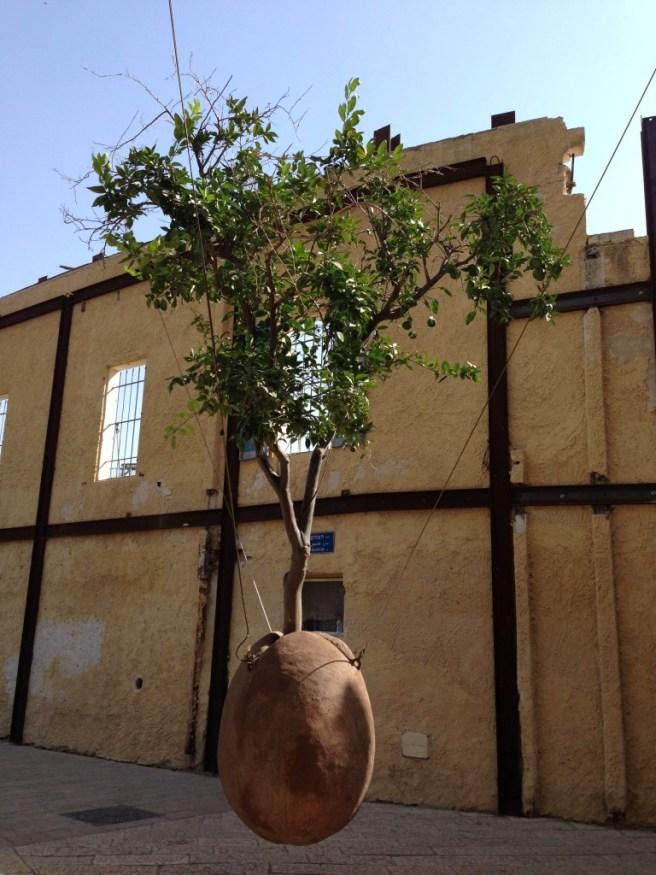 Висячее дерево