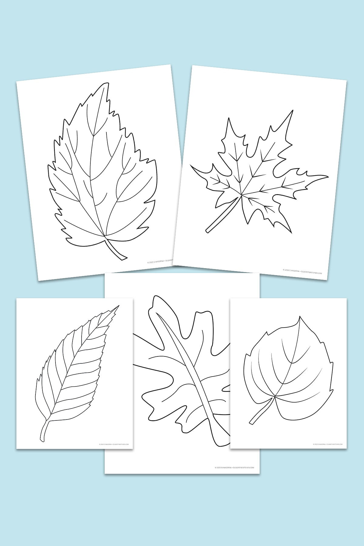 Simple Autumn Leaves Coloring Pages
