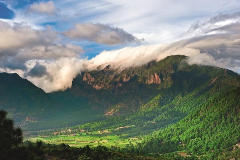 Grüne Berglandschaft auf La Palma