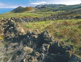 Wiesen mit Steinwall auf El Hierro