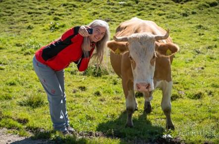 Frau Selfie mit Kuh