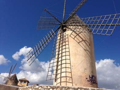 Mühlen Palma