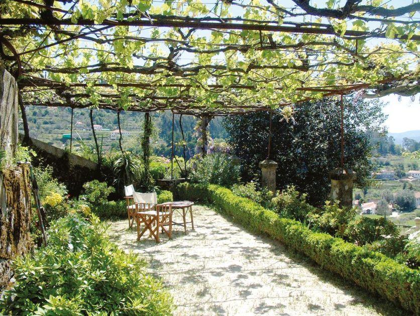Terrasse Weinreben Solares