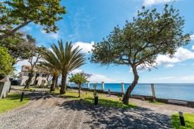 Promenade mit Palmen und Bäumen Madeira