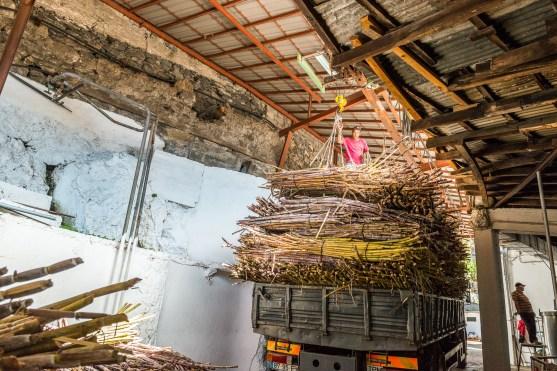 LKW mit Zuckerrohr Madeira