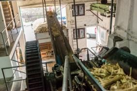 Blick in Zuckerrohrfabrik Madeira