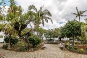 Park mit Palmen und Bänken Sao Miguel Azoren