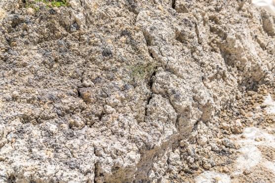 Mauer Azoren