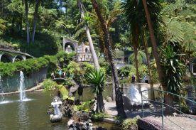 Tropischer-Garten