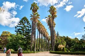 Palmen Park Belém