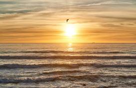 Portugal Porto Strand Sonnenuntergang