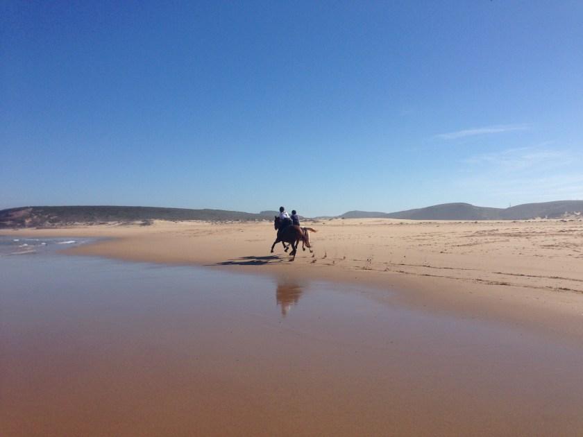 Pferd Reiter am Meer an der Rota Vicentina