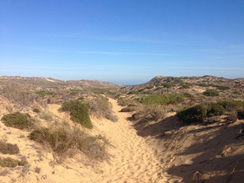 Rota Vicentina sandiger Fischerpfad bei Praia da Bordeira