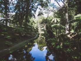 Teich im Terra Nostra Park
