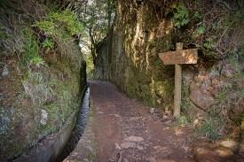 Wanderweg Balcoes Levada Madeira