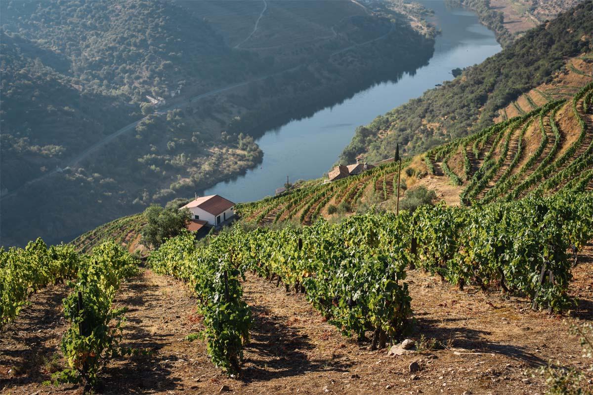 Nordportugal Douro Radreise