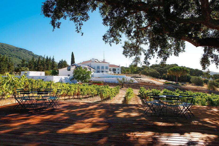 Hotel Casa Palmela Außen am Weinwanderweg
