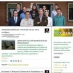 Blos Del Aceite de Oliva Ecológico