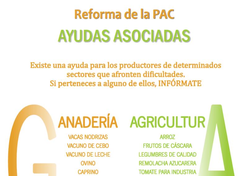 Reforma PAC 2015-2020_Ayudas asociadas_Logo Olivar de Sierra Los Pedroches. Aceite Ecológico.