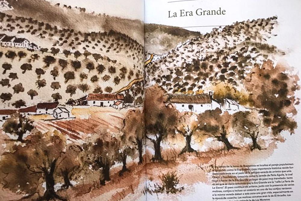 Libro Cultura del Olivar de Sierra en los Pedroches Aceite Ecologico olivalle(2)