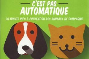 Antibiotiques_animaux_L900