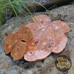 Rust Fig Leaves Dish Set