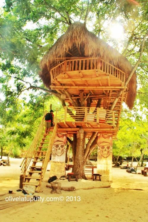 rumah pohon di bali
